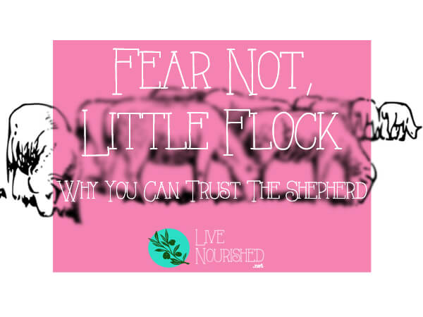Fear Not, Little Flock: Why You Can Trust The Shepherd {+ free printable}