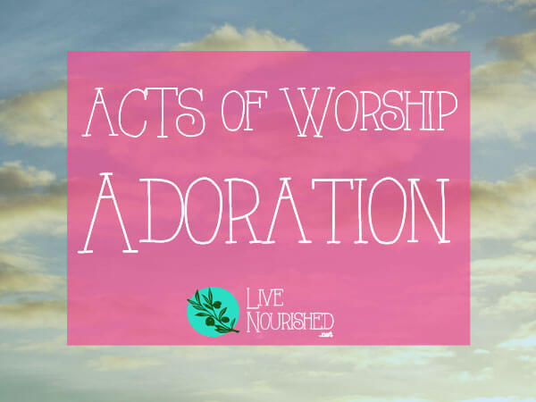 Want an easy to remember format for your quiet time? This series will show you the ACTS of worship... { Post 2 - Adoration }