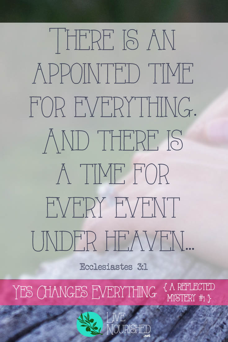 There is an appointed time for everything. And there is a time for every event under heaven... { Ecclesiastes 3:1 } What do getting engaged and placing your faith in Jesus have in common? Both require a willing response - a yes. And both, when answered with a yes, will change everything...