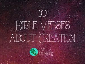 10 Bible Verses about Creation