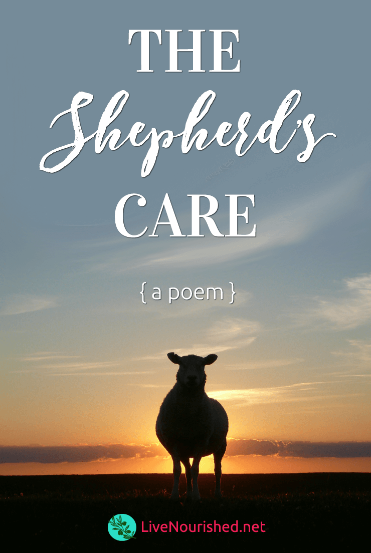 Are you weary? Battling fear? Let this poem encourage and strengthen your faith in the Good Shepherd's loving care …