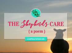 Are you weary? Battling fear? Let this poem encourage and strengthen your faith in the Good Shepherd's loving care…