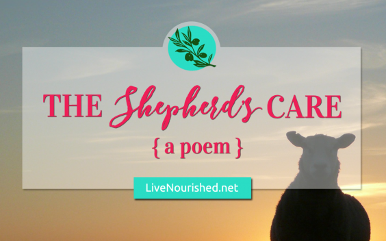 The Shepherd's Care {poem}