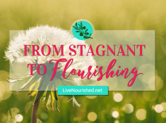 Elizabeth Johnson shares how God's faithfulness brought her from stagnant years to flourishing amidst trials, and reminds us that He is always there…